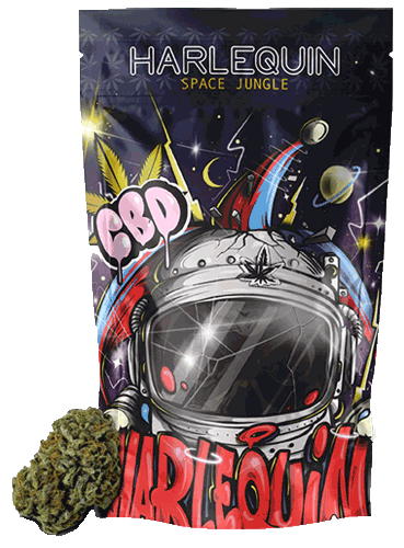 Space Jungle – Harlequin
