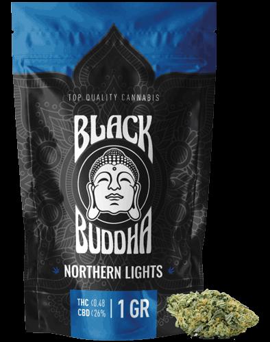 Black Buddha – Northern Lights