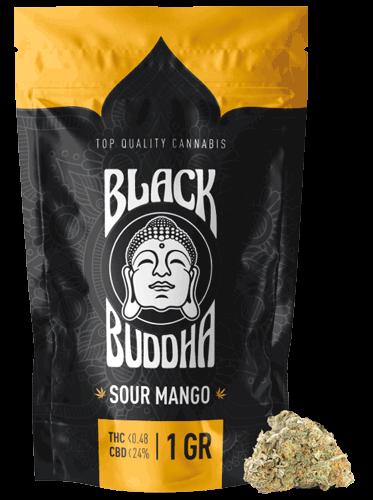 Black Buddha – Sour Mango