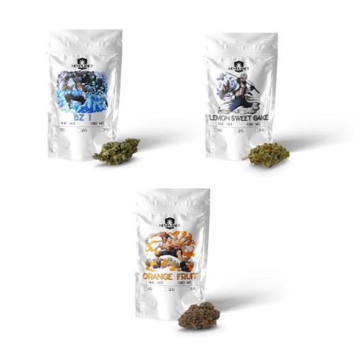 Hemplanet – Tasting Box